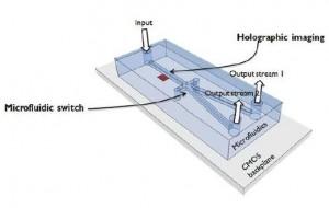 IMEC Cell Sorter1