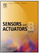 Journal_Sensors_B