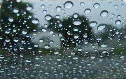 windshield