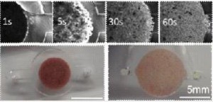 integrated microfluidic chip
