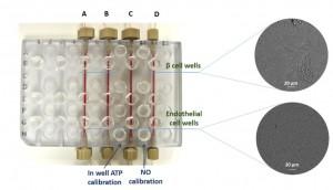 3D printed fluidic device-SLU